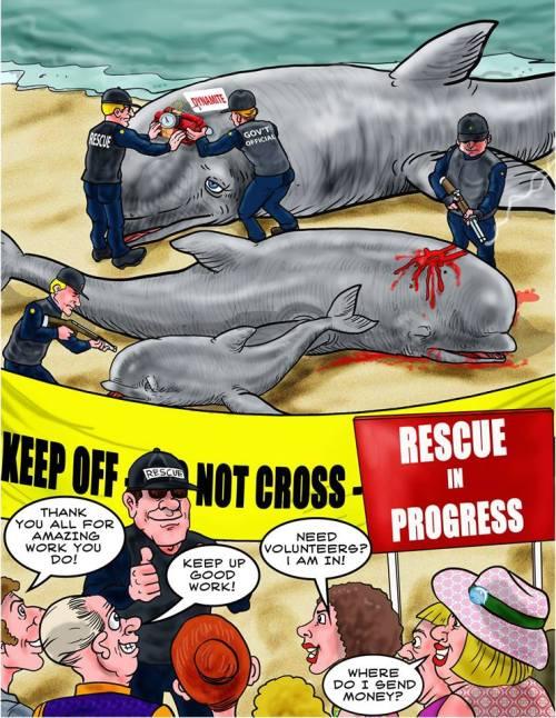 Rescue-in-progress-SNM