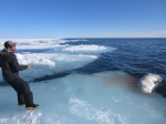 Rick Ningeocheak hauls a beluga onto the floe edge ice southeast of Coral Harbour June 6, after five straight days of failed attempts. (PHOTO BY GREG NINGEOCHEAK)