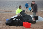 In July 2011 39 pilot whales were stranded on the sand in the Kyle of Durness, Scotland, following a series of controlled nearby underwater bomb explosions. Photograph: Donald Mitchell/Highland Council