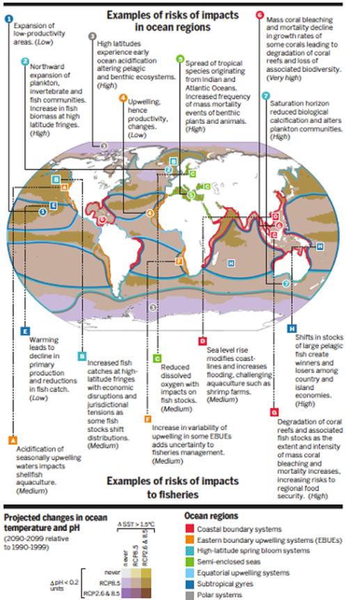 impacts-ocean-regions