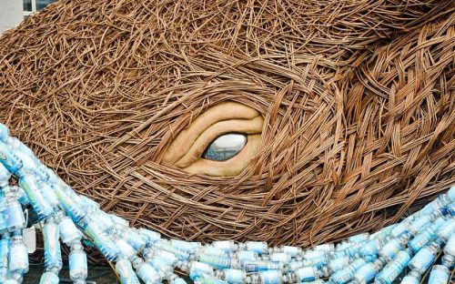 The eye of a whale made from willow PA