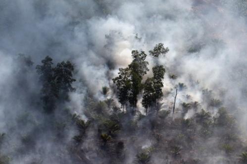 foret-en-feu-Indonesie