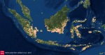 Impact-feux-Indonésie