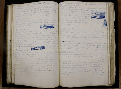 whaling-logbook