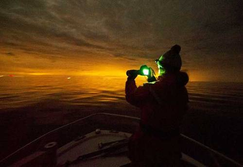 A crew member uses a low-light digital camera to photograph right whales in the evening in Cape Cod bay, before moving in to use more sophisticated night vision equipment to monitor the mammals. Photo Isabelle Groc.
