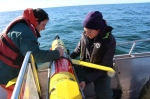 Adam Comeau of OTN Halifax and Rianna Burnham of the University of Victoria prepare to launch the glider.   Photograph By UVic Whale Research Lab