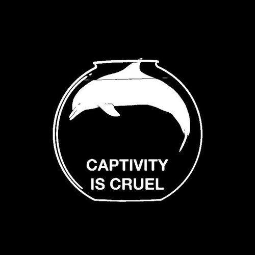 captivity-is-cruel
