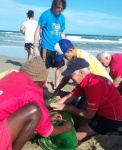The NSRI's Jeffrey's Bay crew attended to the severely injured dolphin. (NSRI)